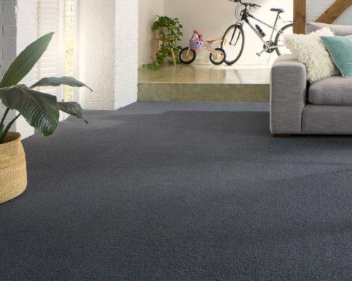 Carpet-Gallery-18