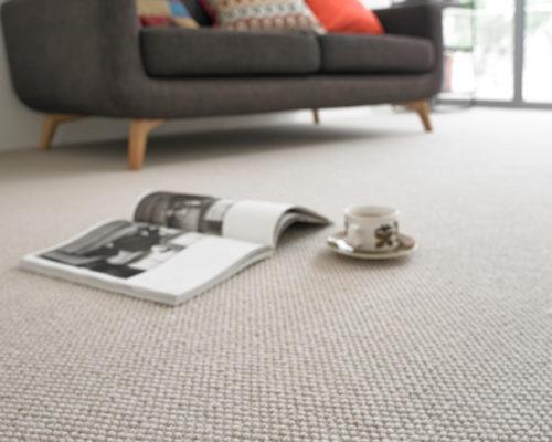 Carpet-Header-2